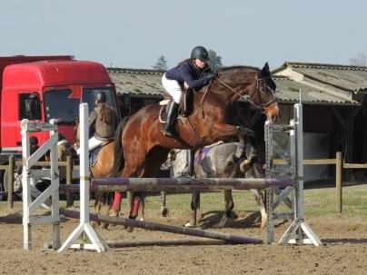 Septy en concours de saut d'obstacles