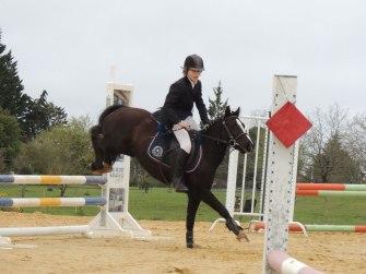 Concours de saut d'obstacle