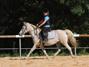 Cavalier sur son poney