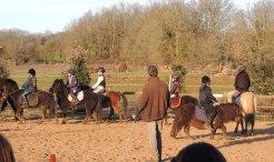 Détente des poneys